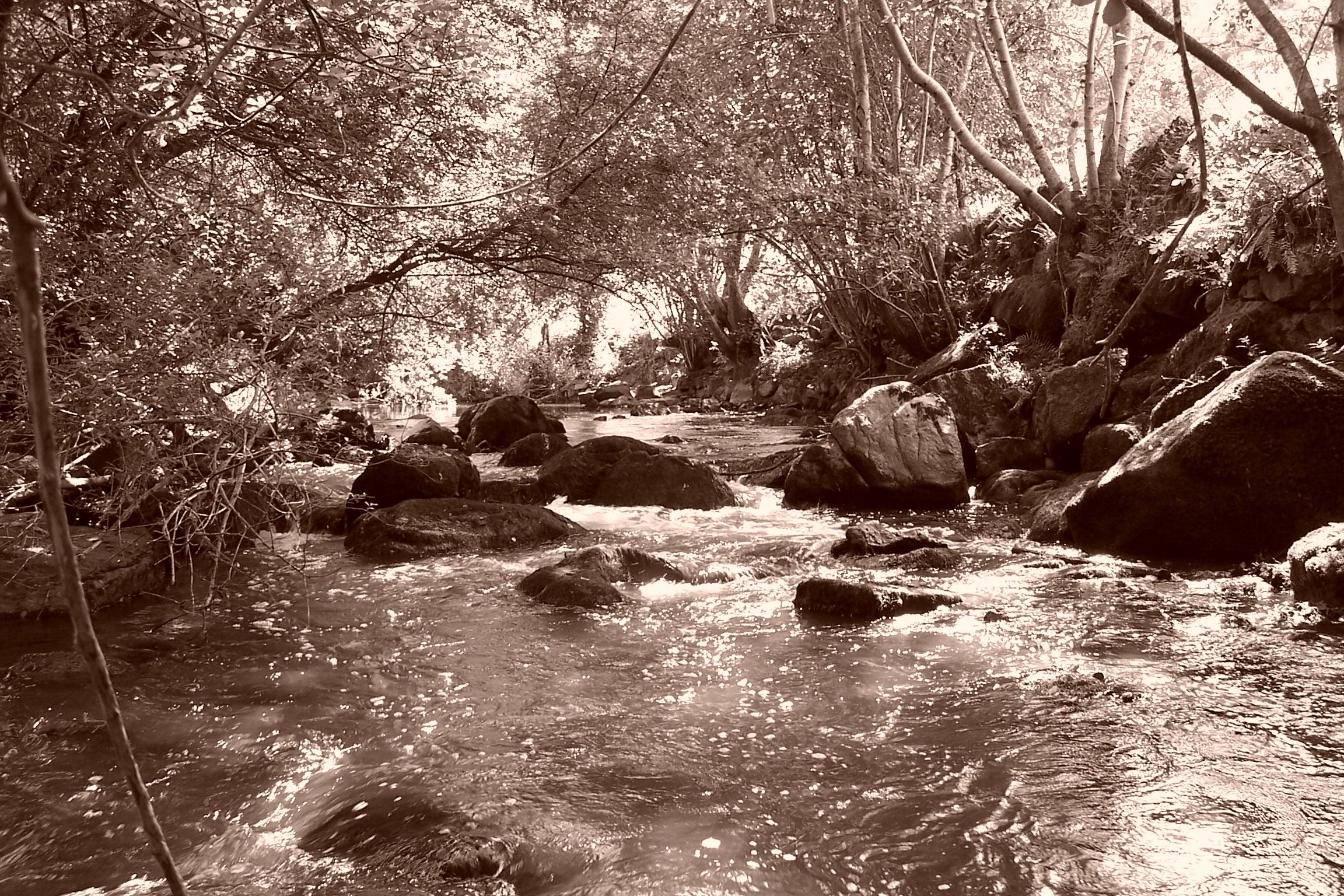 Le Sornin au pont des Modeux (Chassigny-sous-Dun-71)