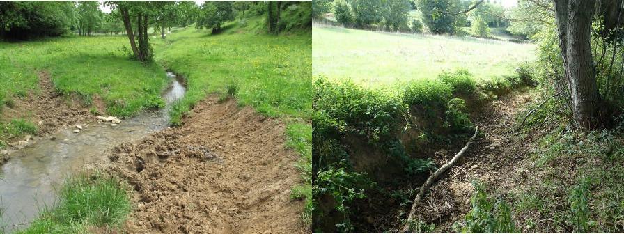 Le Talenchant en amont du bourg de Verzé : à gauche, tronçon sans arbres et piétiné par les bovins ; à droite, lit asséché en 2015 par le propriétaire d'un plan d'eau