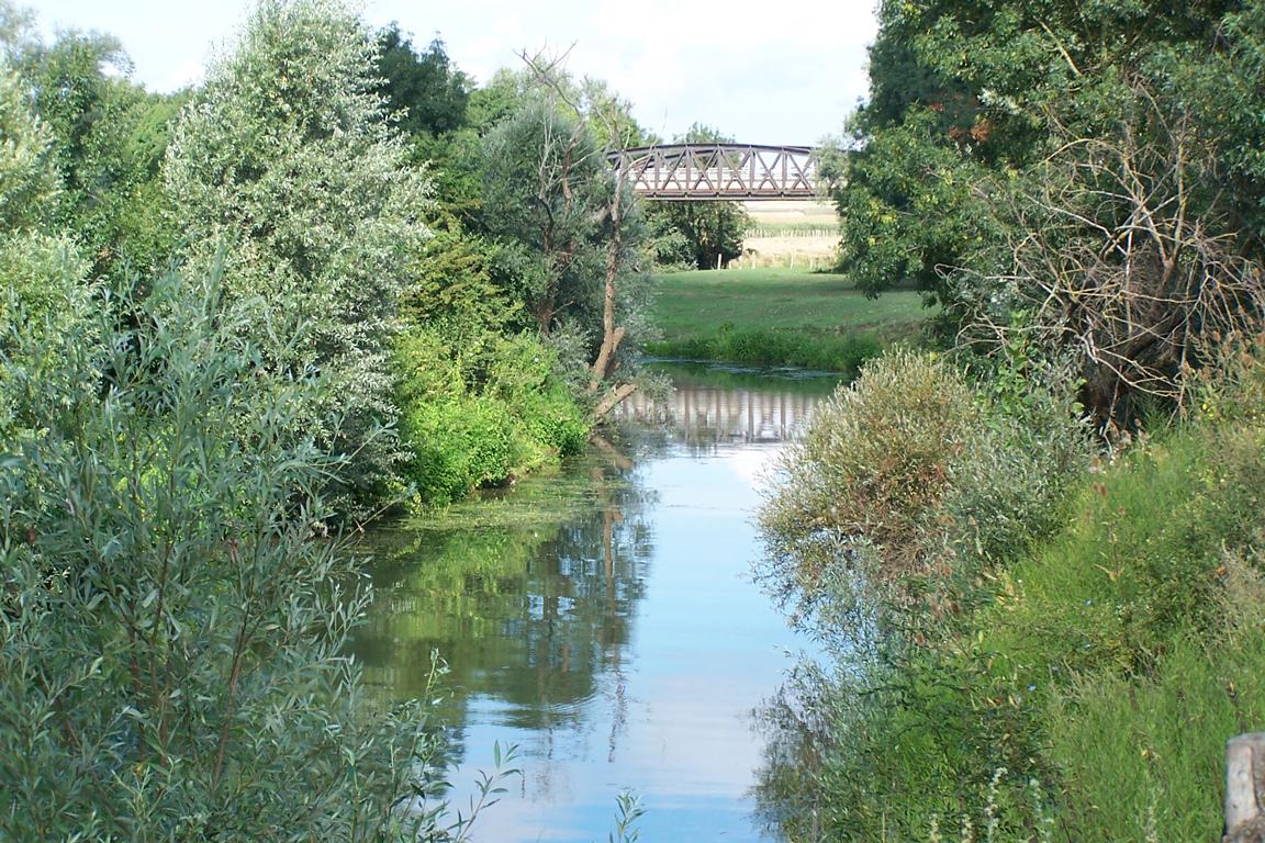 La Dheune à la confluence avec la Saône