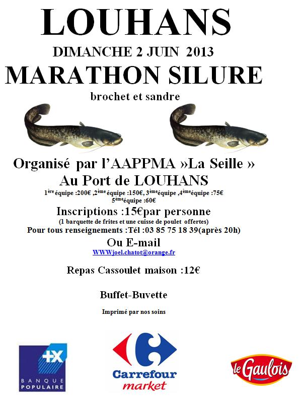 Marathon Silure Louhans 2013