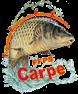 carpe_sa-ffps-1-78