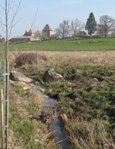 Plantations sur le ruisseau de la Verrerie (71)