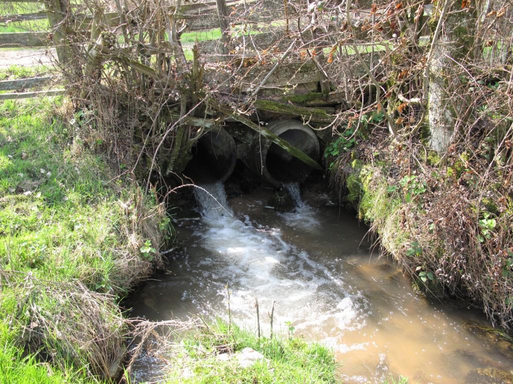Obstacle à la libre circulation piscicole sur le ruisseau de Bessay (Haut bassin de la Grosne)
