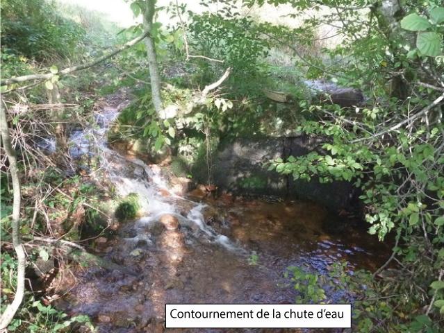 Aménagement franchissabilité de la chute d'eau - Ruisseau du Chenelet - Chemin du Riolots