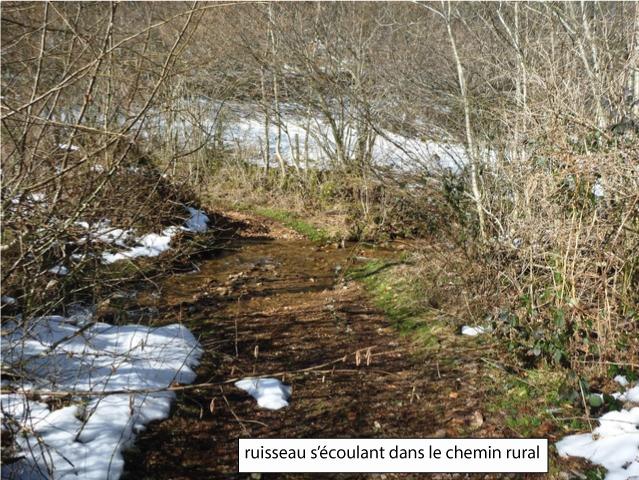 Ruisseau s'écoulant dans le chemin du Riolot