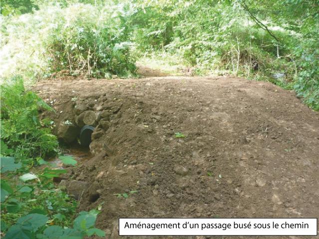 aménagement passage busé sous le chemin rural de Riolots - (crédits photo : Parc Naturel Régional du Morvan)