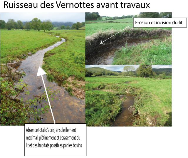 Ruisseau des Vernottes dépourvu de ripisylve