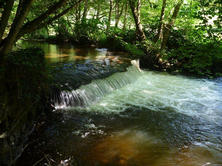 Seuil de l'étang Bouton