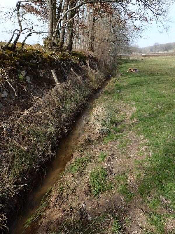 Curage de ruisseau