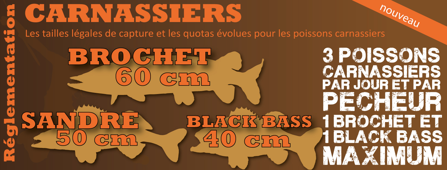 Quotas de capture brochet, sandre, black bass